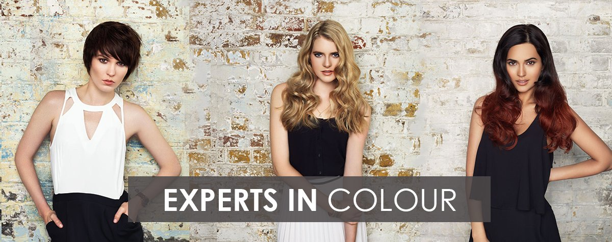 experts-in-colour