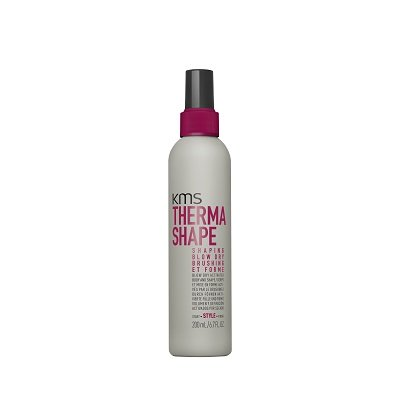 TS Shaping Blow Dry 200mL