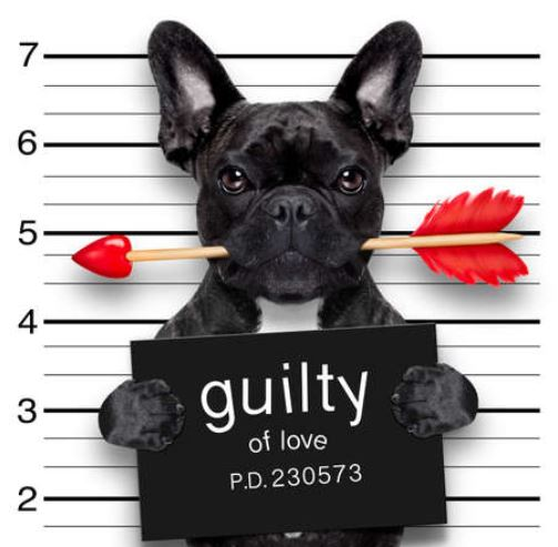 Are You Guilty Of LOVE?!